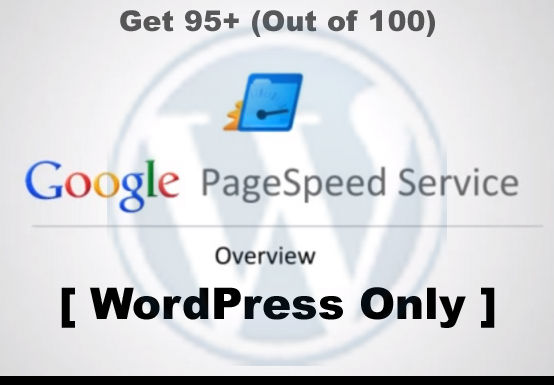 10-Best-Tips-to-Get-95+-Score-on-Google-Page-Speed-Insights