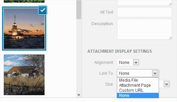 default-image-link