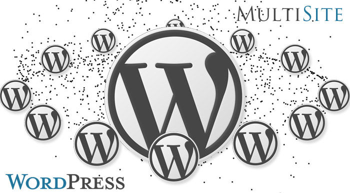Hướng dẫn cách chạy WordPress Multisite trên CentMinMod